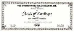TICA сертификат