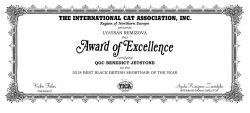 TICA сертификат 2018